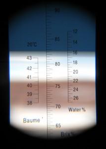 Blick durchs Refraktometer. 15,8% Wassergehalt in unserem Honig. Ein top Wert!